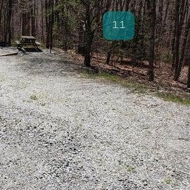 Grayson Highlands SP Site 11