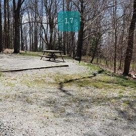 Grayson Highlands SP Site 17