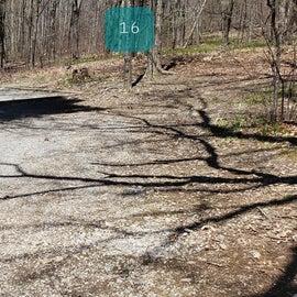 Grayson Highlands SP Site 16