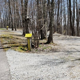 Grayson Highlands SP Site 20