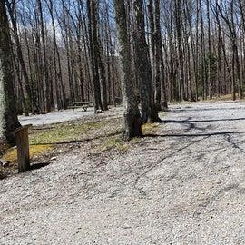 Grayson Highlands SP Site 28