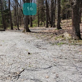 Grayson Highlands SP Site 56