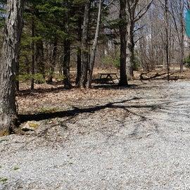 Grayson Highlands SP Site 42