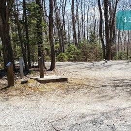 Grayson Highlands SP Site 41