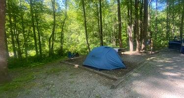 Grandview Sandbar Campground