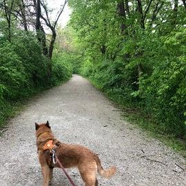 The I & M Canal Trail is a pleasant bike path.