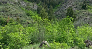 Green Canyon Dispersed Campground