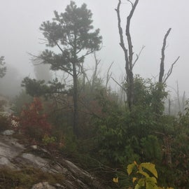 hiking up in the clouds