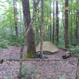 Slightly sloping tent spsts