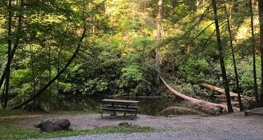 Abram's Creek Campground