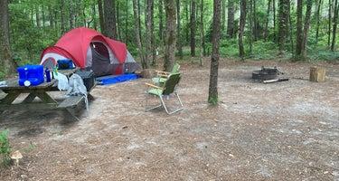 Congaree National Park Camping