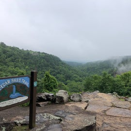 View from Lodge and start of Cedar Falls Trail