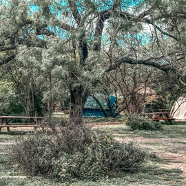 Tent Camping Sites