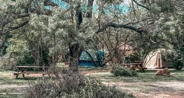 Yogi Bear's Jellystone Park in Fredericksburg Wine Country