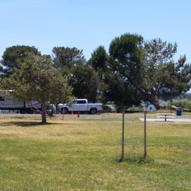 Spacious grassy areas between sites.