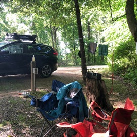 """Another photo of """"living area"""". We put our radio on the stump and it was the perfect spot."""