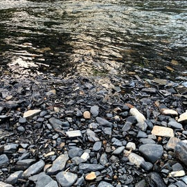 I loved examining all of the smooth rocks that made up the riverbed