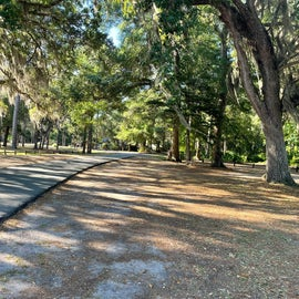 Road through the park