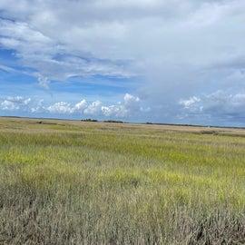 Cumberland Island - salt marsh