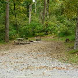 Swartswood State Park Campsite CS52