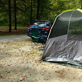 Tall Tent!