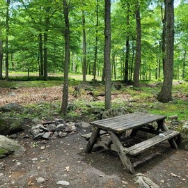 fire pit and picnic table at our cabin site. we were also able to park right next to our cabin (A-12)