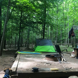 Site 2 view from my eno