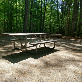 Level campsites equipped with fire rings and nice picnic tables