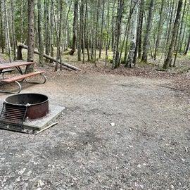 Campsite D84
