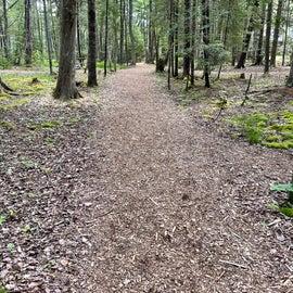 Path to the walk-ups