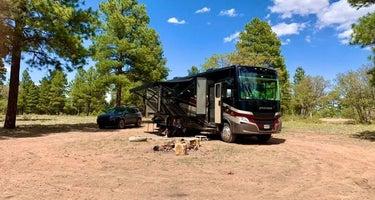 Coconino Rim Road Dispersed Camping