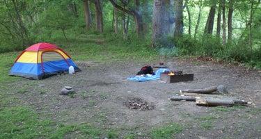 Hornbeck's River Campsites
