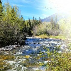 Creek behind tent spot