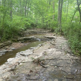 The river bed, one of the trails takes you past