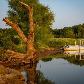 Taken from the boat dock, Feyodi Creek