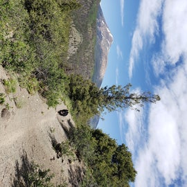 view from Rainbow Trail,  access from hwy 285 or from Silver Creek Rd