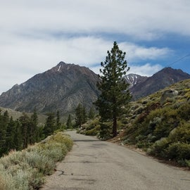 Approaching the campground