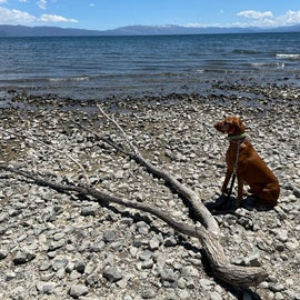 Lake Forest Beach- Tahoe City