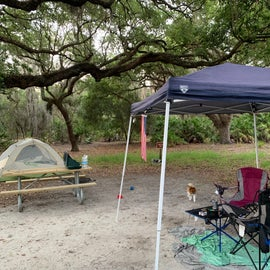 camp is set up
