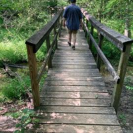 the bridge on the trail around the lake