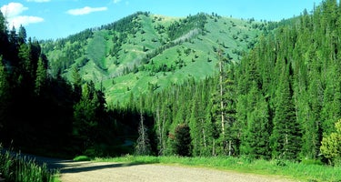 Dispersed camping along Cliff Creek in Bridger-Teton National Forest