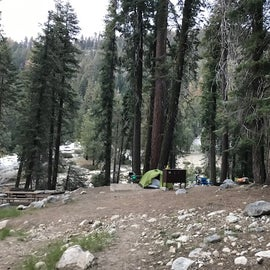 Lodgepole site 78. Our table is behind the tent. 74's table is to the left.