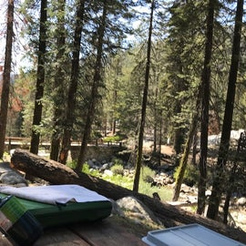 View from our picnic table, toward the bridge, which leads to another section of the campground.