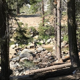 View of the river from our site. Some people were hopping the rocks to get from Tokopah Falls Trail to their campsite on this side of the river.