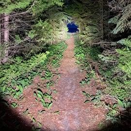 path to Lake Huron at night