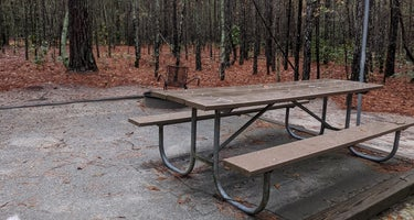 Chalk Banks - Lumber River State Park