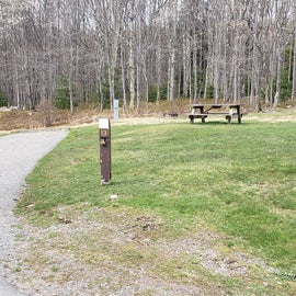 Blackwater Falls SP Campground Site 14