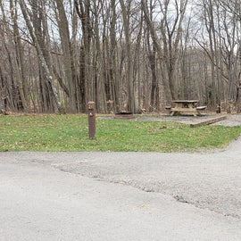 Blackwater Falls SP Campground Site 21