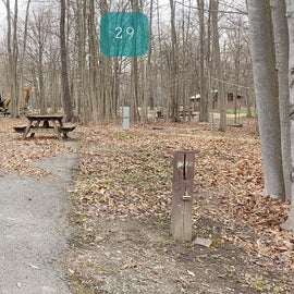 Blackwater Falls SP Campground Site 29