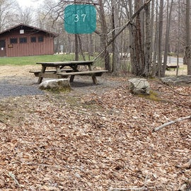 Blackwater Falls SP Campground Site 37